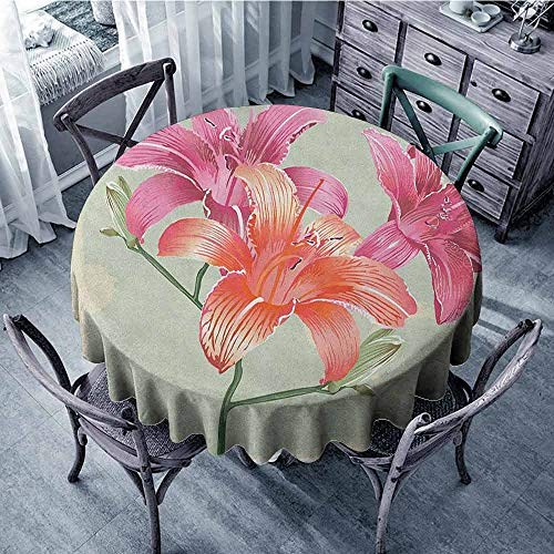 (ScottDecor Banquet Round Tablecloth Tassel Tablecloth Vintage Floral,Lily Flowers on Grunge Backdrop Gardening Plants Growth Botany, Pale Green Salmon Pink Diameter 54