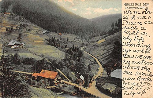 Schwarzwald Germany Black Forest Village Scenic View Antique Postcard K22654
