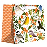 Jillson Roberts 6-Count Medium 10'' x 8'' x 4'' Floral Gift Bags Available in 11 Different Designs, Little Birdies