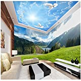 Ohcde Dheark Wall Panel 3D Wallpaper Snowy Open Green Space Photography Background Modern Mural For Living Room Large Painting Home Decor 430cmX300cm(169.3 by 118.1 in )