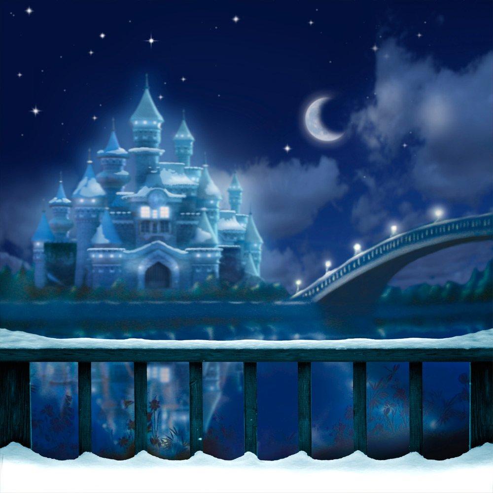 写真バックドロップ – Czars冬宮殿 – 10 x 10 ft。 – 100 %シームレスなポリエステル   B00NY87T6I