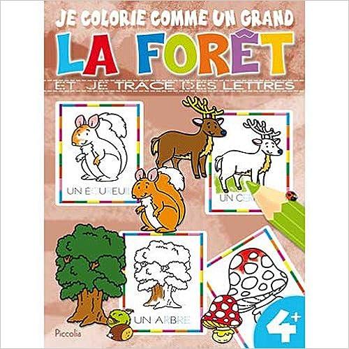 Livre LA FORET - JE COLORIE COMME UN GRAND epub pdf