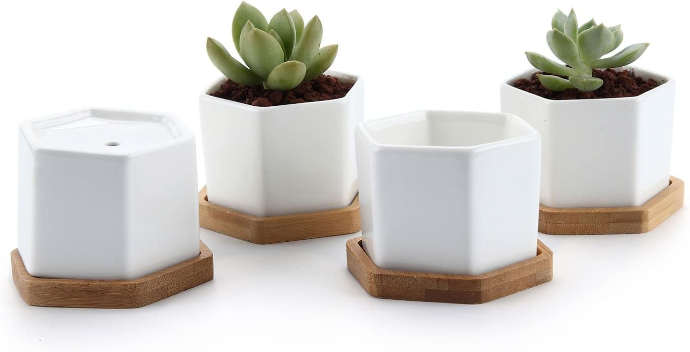 T4U Small White Succulent Planter Pots with Bamboo Tray Hexagon Set of 4, Geometric Cactus Plant Holder Container for Home Office Table Desk Decoration Gift for Mom Aunt Sisiter Daughter Gardener