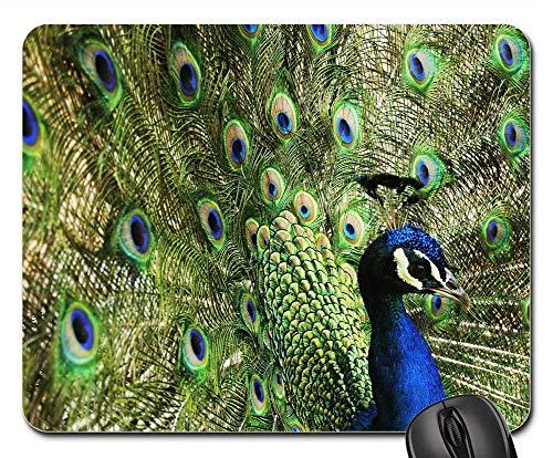 Mouse Pad - Peacock Bird Blue Nature Royals Palace Green