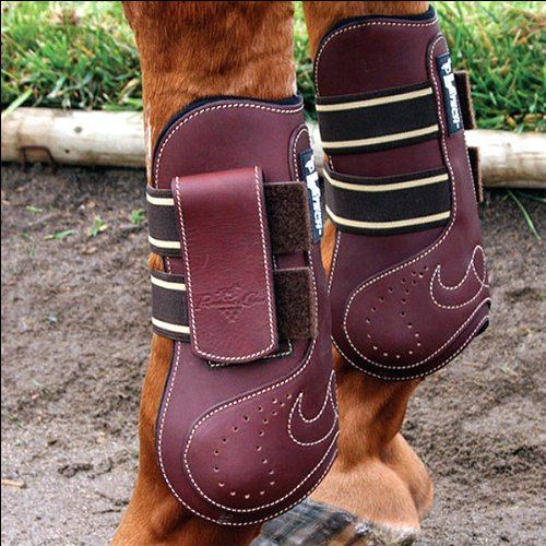 - Professionals Choice Equine Ventech Leather Open Front Jumping Boot, Pair (Medium, Chocolate Brown)