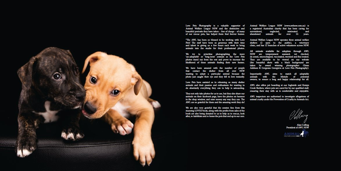 Loved Pets Premium Edition Volume 1 Love Pets Photography