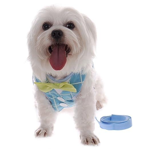 Poliéster perro esmoquin chaleco arnés con correa Plomo Set con ...