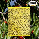 "20-Pack Yellow Bugs Traps Sticky Board, Dual-Sided Fruit Fly Trap Sheets (6""×8"") for Flying Aphid insect, Garden, Lawn, Farm Pest Controlling Board (Twist Ties included)"
