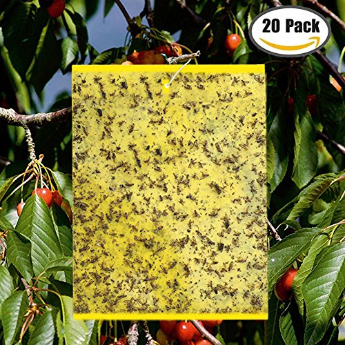"""20-Pack Yellow Bugs Traps Sticky Board, Dual-Sided Fruit Fly Trap Sheets (6""""×8"""") for Flying Aphid insect, Garden, Lawn, Farm Pest Controlling Board (Twist Ties included) by GoTrap"""