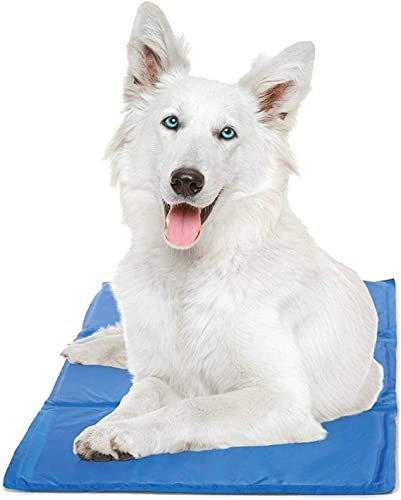 Chillz-Cooling-Mat-For-Dogs---Pressure-Activated-Gel-Dog-Cooling-Mat