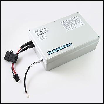 FREAKYSCOOTER 48 V 25 Ah Samsung batería de Litio - Ion de ...