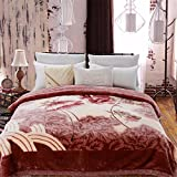 Raschel Blanket Weighted Napping Throw Snuggle Reduce Anxiety Help Autism Bed Couch Cozy Warm Smooth Heavy Thanksgiving Wedding Christmas Birthday Gift,Full180×220cm 2.8kg