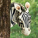 Hang this whimsical zebra head on a tree, fence or post and create the illusion of him peeking from behind it. A touch of unexpected fun for your yard. Sculpted of hand-painted, weather resistant polyresin. Keyhole hangers on back to secure with your...