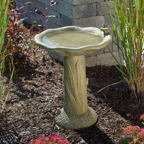 Acadia Traditional Birdbath - Olive Green (Acadia Bowl)