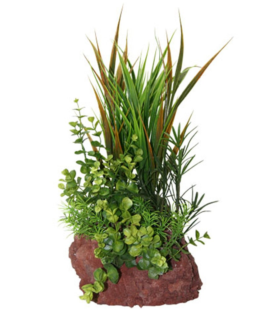 Rock Garden Natural Green Plant with Red Lava Rock Base, 15''