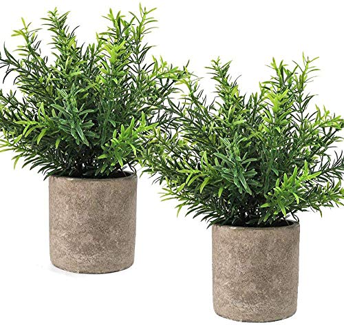 CEWOR 2pcs Artificial Mini Potted Plants Faux Rosemary Fake Plastic Bamboo Leaves for Bathroom Shelf Home Office Desk…