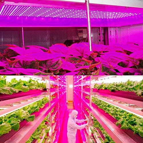 Led Plant Grow Light Higrow 45w 225 Leds 6 Band Full