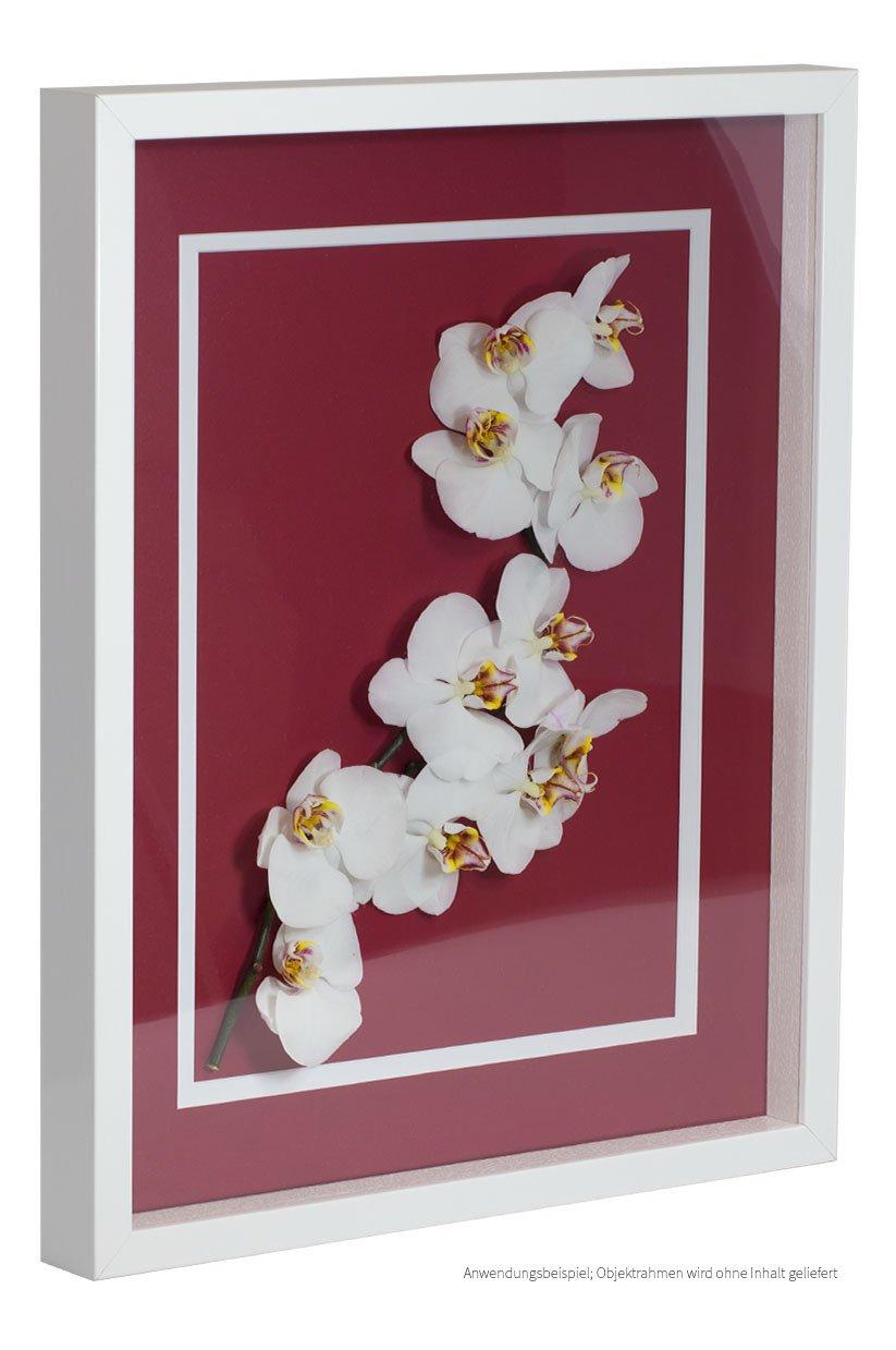 Bildershop-24 Objektrahmen FrameBox VARIO36 Weiß (matt) 50x60cm zum Einrahmen von Trikots, Blumen, Passepartouts etc.
