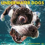 2018 Underwater Dogs - by Seth Casteel Wall Calendar {jg} Great Holiday Gift Ideas - for mom, dad, sister, brother, grandparents, gay, lgbtq, grandchildren, grandma.