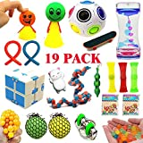 19 Pack Sensory Bundle For Stress Relief And Birthday Party Favors, Marble and Mesh, Soybean Squeeze, Liquid Motion Timer & More