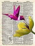 N/a Dictionaries - Best Reviews Guide