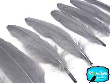 moonlight feather 1 pack silver gray goose