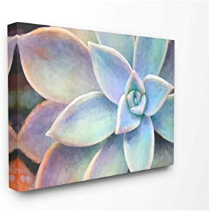 Stupell Industries Succulent Plant Vibrant Bloom Painting Canvas Wall Art, 16 x 20, Design by Artist Joshua Chace