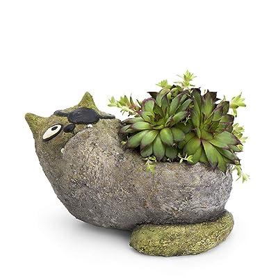 Jack Cat Planter, by Blobhouse, Decorative Planter w/Drain Hole Statue for Home Outdoor Garden Lawn & Indoor Art Accent Sculpture : Garden & Outdoor [5Bkhe0105320]