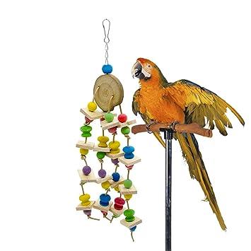 Pájaro Juguete de madera Bocado Bloques de construcción de juguete ...
