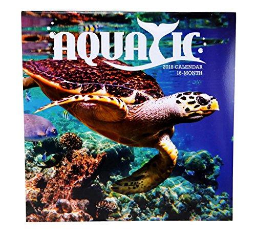 2018 Aquatic Ocean Monthly Wall Calendar, 12 x 24 Inches