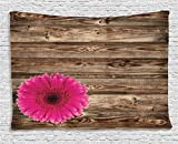 Ambesonne Rustic Home Decor Collection, Pink Daisy Blossom on Vintage Wood Wall Picture Gerbera Flower Farm Country Style, Bedroom Living Room Dorm Wall Hanging Tapestry, 80 X 60 Inches, Brown Fuschia