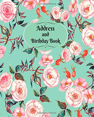 Address and Birthday Book: Pink And Blue Floral Design Address Logbook, Phone Numbers, Email and Birthday Information, Alphabetical Addresses ... (Contact Address Log Books) (Volume ()