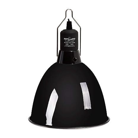 Amazon.com: reptizoo – Mini Dome, óptico lámpara de techo ...