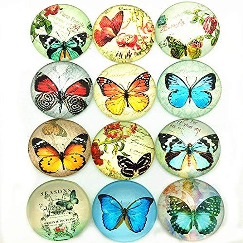 IGOGO 12 PCS Glass Dome Cabochons Half Round Flatback Beautiful Butterfly