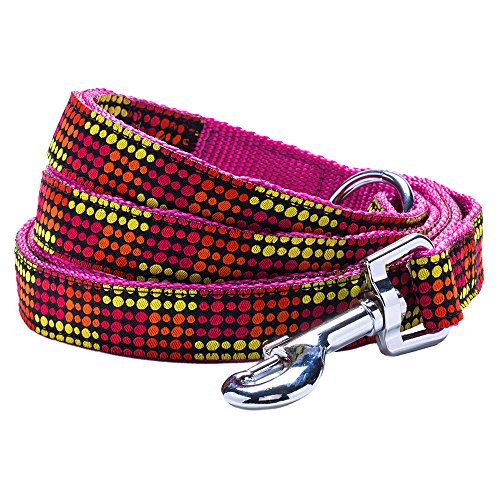 "Blueberry Pet 3 Patterns Durable Wild African Vivid Dots Designer Dog Leash 5 ft x 3/4"", Medium, Leashes for Dogs"