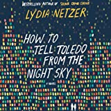 Front cover for the book How to Tell Toledo from the Night Sky: A Novel by Lydia Netzer