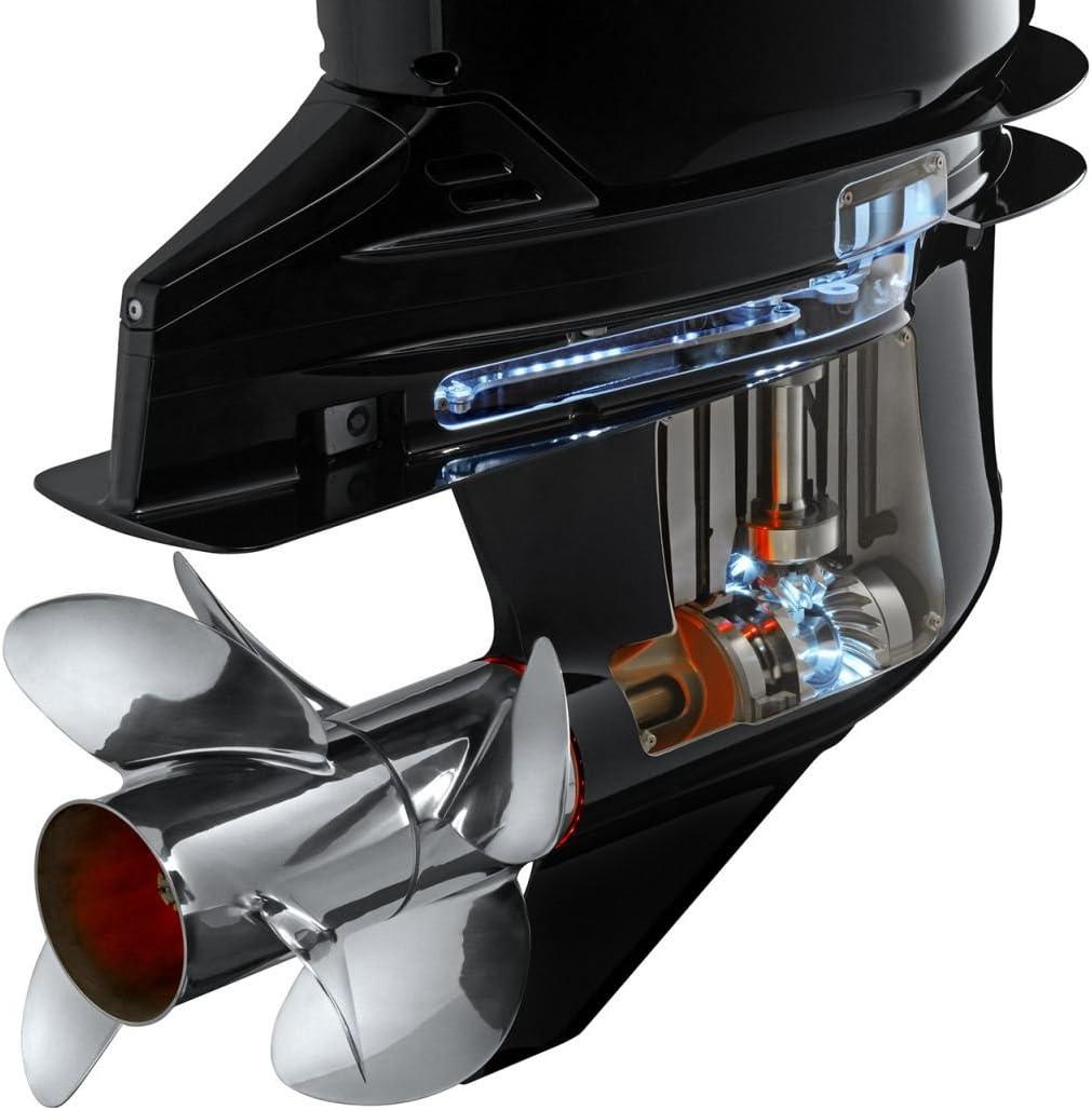 MOTUL 102950 getriebeöl Transcend slube SAE 90, 270 ml: Amazon.es ...