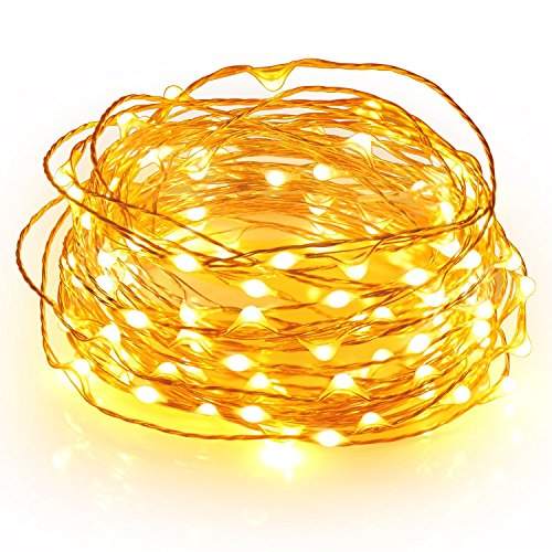 Gorgeous String Lights, Copper Wire Starry String Light, Soothing Décor, Elegant Rope Light Suitable for Christmas, Weddings, Parties Waterproof (33' 100 LEDs) - Divine LEDs
