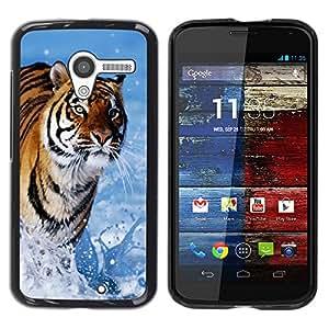 Stuss Case / Funda Carcasa protectora - Tiger Blue Water Nature Sun Summer - Motorola Moto X 1 1st GEN I XT1058 XT1053 XT1052 XT1056 XT1060 XT1055
