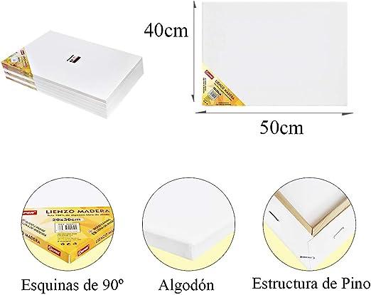 Pack de 4 lienzos 40 x 50 cm de 100% algodón apto para óleo ...