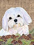 Caroline's Treasures SS4073CHF Maltese Flag Canvas, Large, Multicolor Review