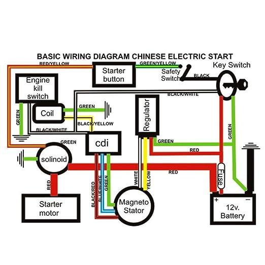 Raptor 110 Atv Stator Wiring Diagram - Wiring Diagram on