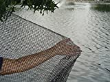DeWitt Pond Netting, 10 by 12-Feet(2Pack)