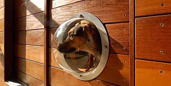 2-Pack Pet Love Fence Bubble