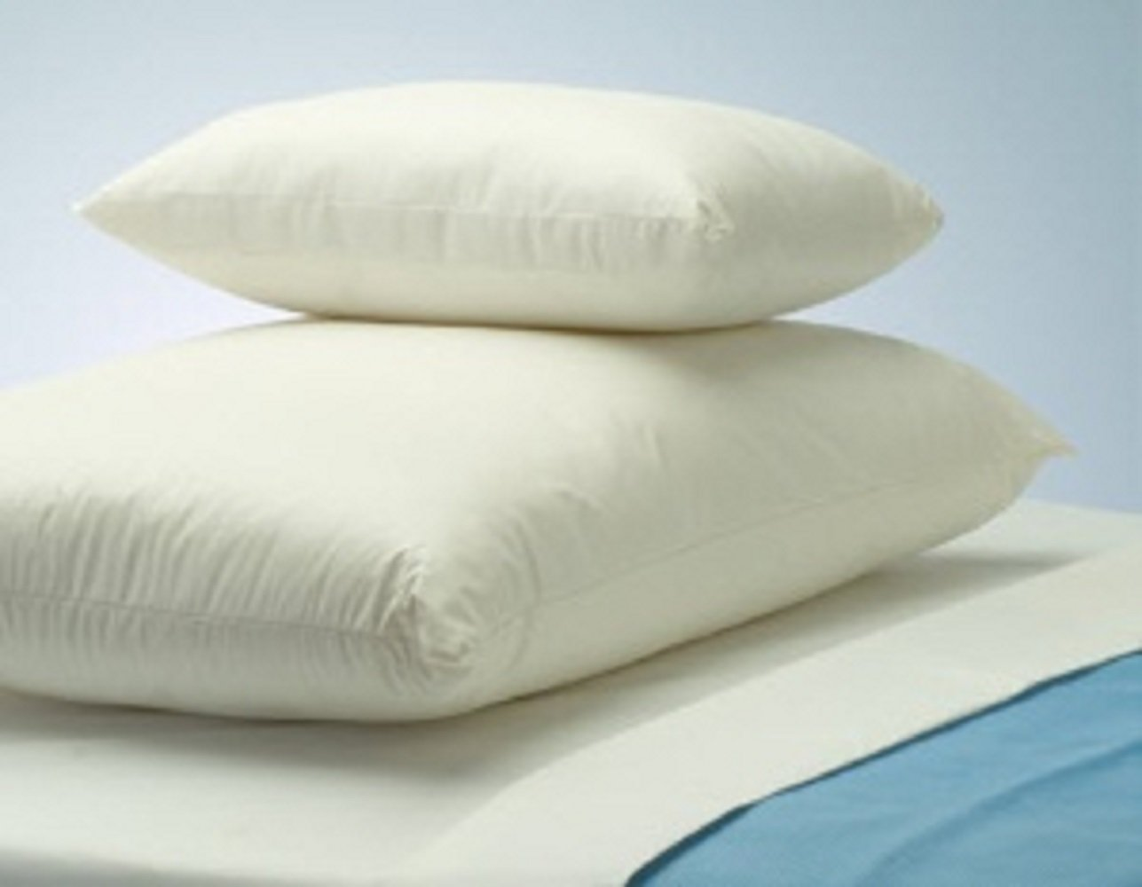 CareGuard - Bed Pillow - 19 X 25 Inch - White - Reusable - 12/Case