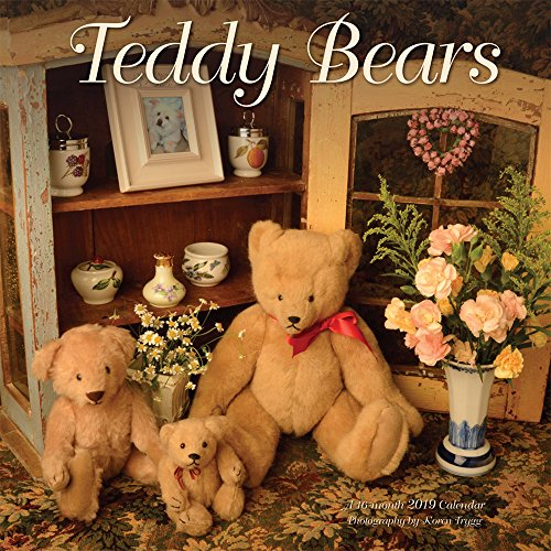 (Teddy Bears 2019 12 x 12 Inch Monthly Square Wall Calendar by Wyman, Doll Children Stuffed Animal)