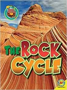Focus on Earth Science California, Teacher's Edition, 2008 *LIKE NEW*