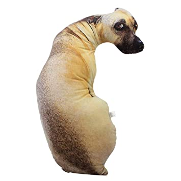 Amazon.com: QSJi - Cojín 3D para perro, diseño de dibujos ...