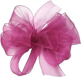 "product image for Offray Berwick LLC 428030 Berwick Simply Sheer Asiana Ribbon - 1-1/2"" W X 25 yd - Fuchsia Ribbon"