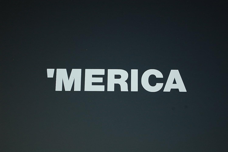 "Merica Sticker Vinyl Decal Choose Color & Size!! 3Percenter Gun Rights 2nd Amendment American Flag AR-15 Car Window Laptop (V515) (4"" X .75"", White)"